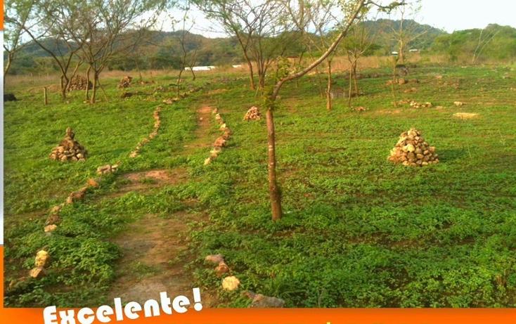 Foto de rancho en venta en  , zona hotelera sur, puerto vallarta, jalisco, 449358 No. 03