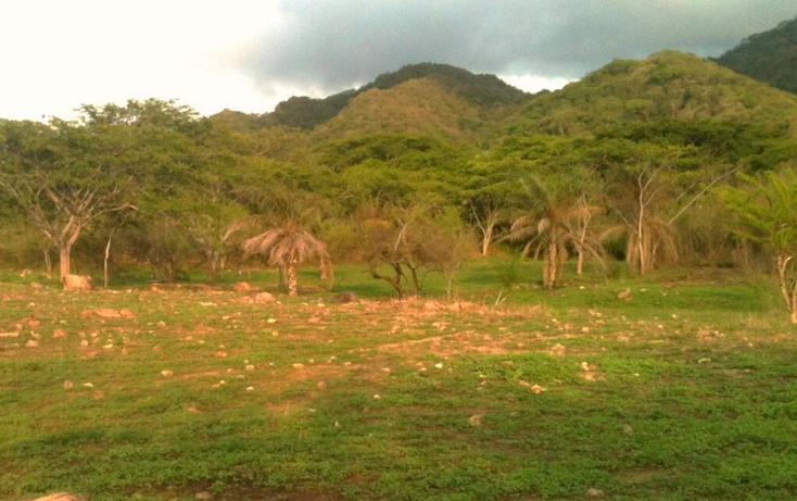 Foto de rancho en venta en  , zona hotelera sur, puerto vallarta, jalisco, 449358 No. 13