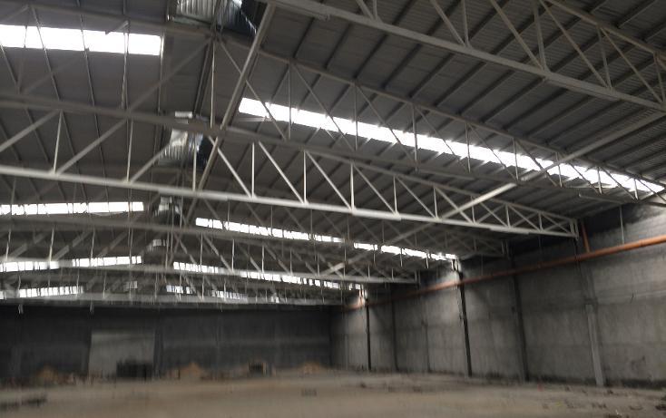 Foto de nave industrial en renta en  , zona industrial, general escobedo, nuevo león, 1194771 No. 06