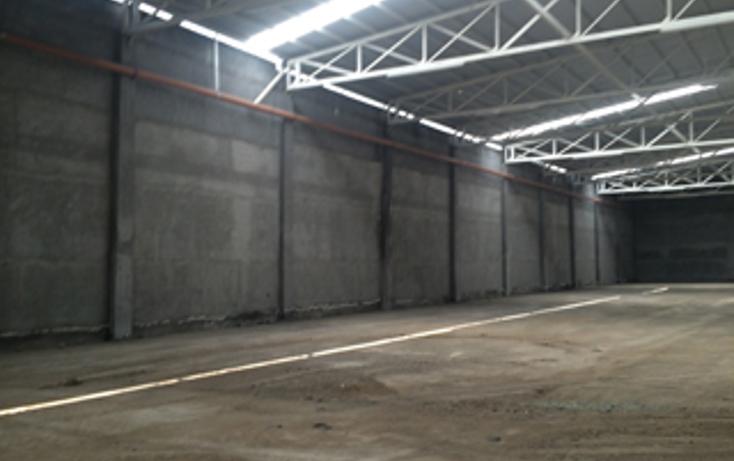 Foto de nave industrial en renta en  , zona industrial, general escobedo, nuevo le?n, 1265715 No. 04