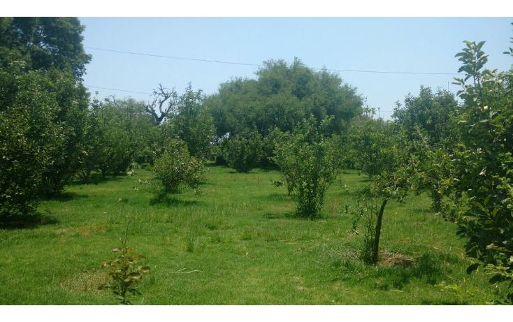 Foto de rancho en venta en  , zona sur tequisquiapan, tequisquiapan, quer?taro, 1939541 No. 37