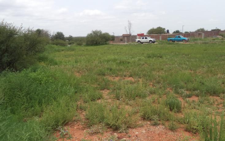 Foto de terreno habitacional en venta en, zoquite, guadalupe, zacatecas, 1092791 no 01