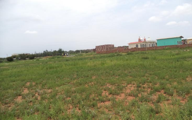 Foto de terreno habitacional en venta en  , zoquite, guadalupe, zacatecas, 1092791 No. 07