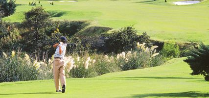 Foto principal de desarrollo en venta en prol. bosques de reforma (antiguo camino al olivo), club de golf bosques 1510653.