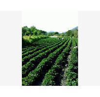 Foto de terreno comercial en venta en  0, santa ana xochuca, ixtapan de la sal, méxico, 2676619 No. 01