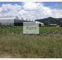 Foto de terreno comercial en venta en ejido tonatico 0, tonatico, tonatico, méxico, 988215 No. 01