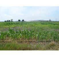 Foto de terreno comercial en venta en  0000, la calera, tlajomulco de zúñiga, jalisco, 1529858 No. 01