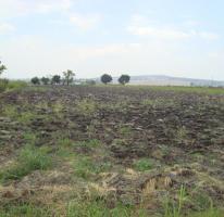 Foto de terreno comercial en venta en vereda de las violetas 000000000, la calera, tlajomulco de zúñiga, jalisco, 1180207 No. 01