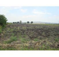 Foto de terreno comercial en venta en  000000000, la calera, tlajomulco de zúñiga, jalisco, 1180207 No. 01