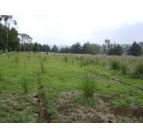 Foto de terreno habitacional en venta en nicolas quintana 001, felipe neri, yautepec, morelos, 607956 no 01