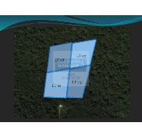Foto de terreno habitacional en venta en  08, tulum centro, tulum, quintana roo, 332423 No. 01