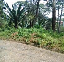 Foto de terreno habitacional en venta en vega de las fuentes 1, avándaro, valle de bravo, méxico, 2407400 No. 01