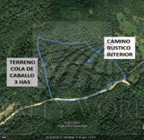Foto de terreno habitacional en venta en 1, el cercado centro, santiago, nuevo león, 1756562 no 01