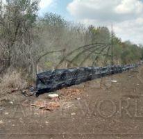 Foto de terreno habitacional en venta en 1, los palmitos, cadereyta jiménez, nuevo león, 1676668 no 01