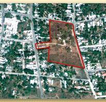 Foto de terreno habitacional en venta en  1, miguel hidalgo, umán, yucatán, 2670510 No. 01