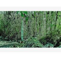 Foto de terreno habitacional en venta en antonio mediz bolio 10, campo sotelo, temixco, morelos, 2165608 no 01