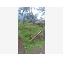 Foto de terreno habitacional en venta en  10, santo tomas ajusco, tlalpan, distrito federal, 2678440 No. 01