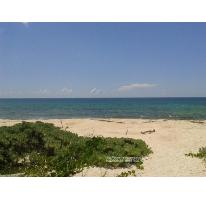 Foto de terreno habitacional en venta en  2, puerto morelos, benito juárez, quintana roo, 480728 No. 01
