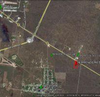 Foto de terreno habitacional en venta en Yaxkukul, Yaxkukul, Yucatán, 3956989,  no 01