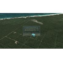 Foto de terreno habitacional en venta en  319, tulum centro, tulum, quintana roo, 328826 No. 01