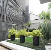 Foto de departamento en venta en Lomas de Chapultepec I Sección, Miguel Hidalgo, Distrito Federal, 3062898,  no 01
