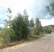 Foto de terreno habitacional en venta en San Pedro Tenango, Amealco de Bonfil, Querétaro, 1379635,  no 01