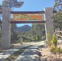 Foto de terreno habitacional en venta en Bosque Real, Huasca de Ocampo, Hidalgo, 930433,  no 01