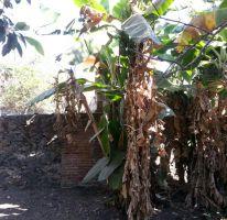 Foto de terreno habitacional en venta en 5 de mayo 16, itzamatitlán, yautepec, morelos, 1443341 no 01