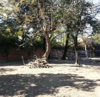 Foto de terreno habitacional en venta en 5 de mayo 36, itzamatitlán, yautepec, morelos, 1443339 no 01