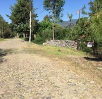 Foto de terreno habitacional en venta en encino 5, tapalpa, tapalpa, jalisco, 2697397 No. 01