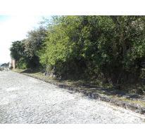 Foto de terreno habitacional en venta en  50, burgos, temixco, morelos, 2704669 No. 01