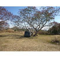 Foto de terreno habitacional en venta en  500, copalita, zapopan, jalisco, 2686200 No. 01