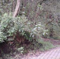 Foto de terreno habitacional en venta en Tlalpuente, Tlalpan, Distrito Federal, 2394366,  no 01