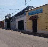 Foto de local en renta en 71 , merida centro, mérida, yucatán, 0 No. 01