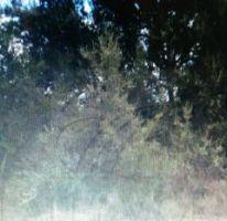 Propiedad similar 2857008 en Bosque Residencial.