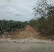 Foto de terreno comercial en venta en Baca, Baca, Yucatán, 1662311,  no 01