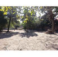 Foto de terreno habitacional en venta en  879, itzamatitlán, yautepec, morelos, 775309 No. 01