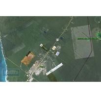 Foto de terreno habitacional en venta en  913, tulum centro, tulum, quintana roo, 1659843 No. 01