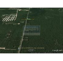 Foto de terreno habitacional en venta en  913, tulum centro, tulum, quintana roo, 586847 No. 01