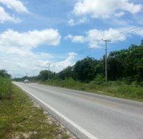 Foto de terreno habitacional en venta en Alfredo V Bonfil, Benito Juárez, Quintana Roo, 1681401,  no 01