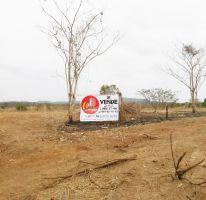 Foto de terreno habitacional en venta en El Habal, Mazatlán, Sinaloa, 2205000,  no 01