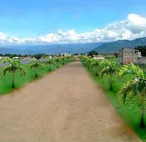 Foto de terreno habitacional en venta en Miguel Hidalgo, Cuautla, Morelos, 1344405,  no 01