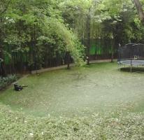 Foto de departamento en venta en Jardines del Pedregal, Álvaro Obregón, Distrito Federal, 493017,  no 01