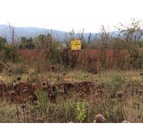 Foto de terreno comercial en venta en  , acuitzio del canje, acuitzio, michoacán de ocampo, 2617001 No. 01
