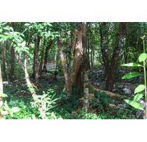 Foto de terreno habitacional en venta en  , akumal, tulum, quintana roo, 2487306 No. 01