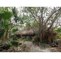 Foto de terreno habitacional en venta en  , álamos i, benito juárez, quintana roo, 2591039 No. 01
