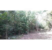 Foto de terreno habitacional en venta en  , álamos i, benito juárez, quintana roo, 2641547 No. 01