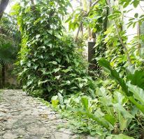 Foto de terreno habitacional en venta en  , álamos i, benito juárez, quintana roo, 4259516 No. 01