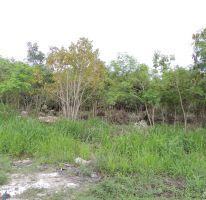 Foto de terreno habitacional en venta en, alfredo v bonfil, benito juárez, quintana roo, 1062175 no 01