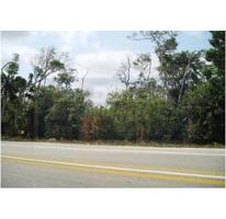 Foto de terreno comercial en venta en  , alfredo v bonfil, benito juárez, quintana roo, 1231387 No. 01